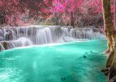 Phân tử nước là gì? Vai trò của nước với sự sống và cơ thể người