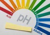 Truy tìm Độ pH là gì? Trong cơ thể độ pH bao nhiêu thì khỏe mạnh?