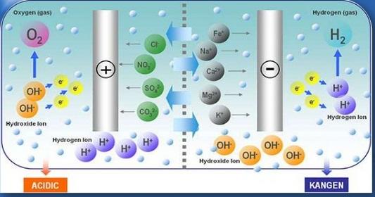 Quá trình điện phân- Chức năng của máy lọc nước ion kiềm Kangen