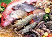 Dùng nước điện giải Kangen làm sạch thịt cá, hải sản tươi sống và vệ sinh nhà bếp!