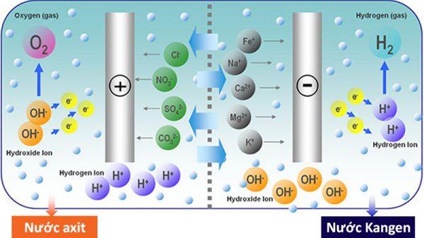 Quá trình công nghệ máy lọc nước ion kiềm kangen