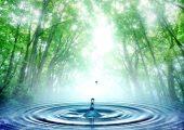 Tìm hiểu vai trò của nước trong đời sống và sản xuất!